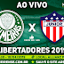 Jogo Palmeiras x Junior Barranquilla Ao Vivo 10/04/2019