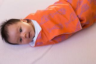 Lotta Jansdotta Snuggler baby swaddle wraps