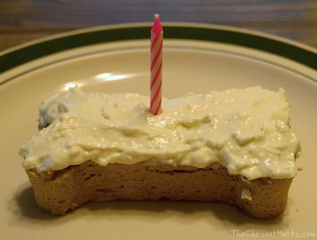 YPCK Birthday Set Pup Kake Package Dog Birthday Cake