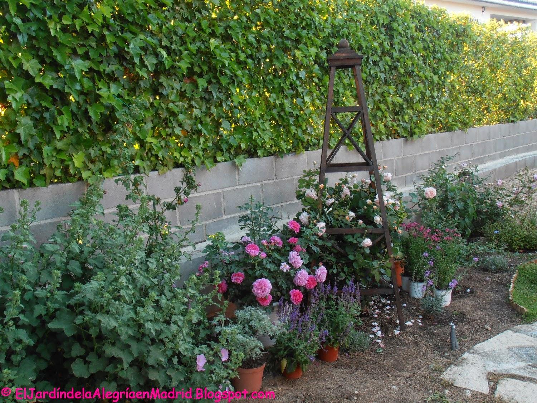 El Jardin De La Alegria El Jardin Trasero En Mayo