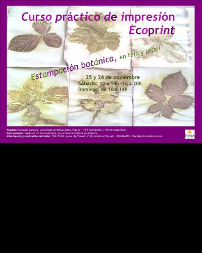 Curso práctico de impresión Ecoprint