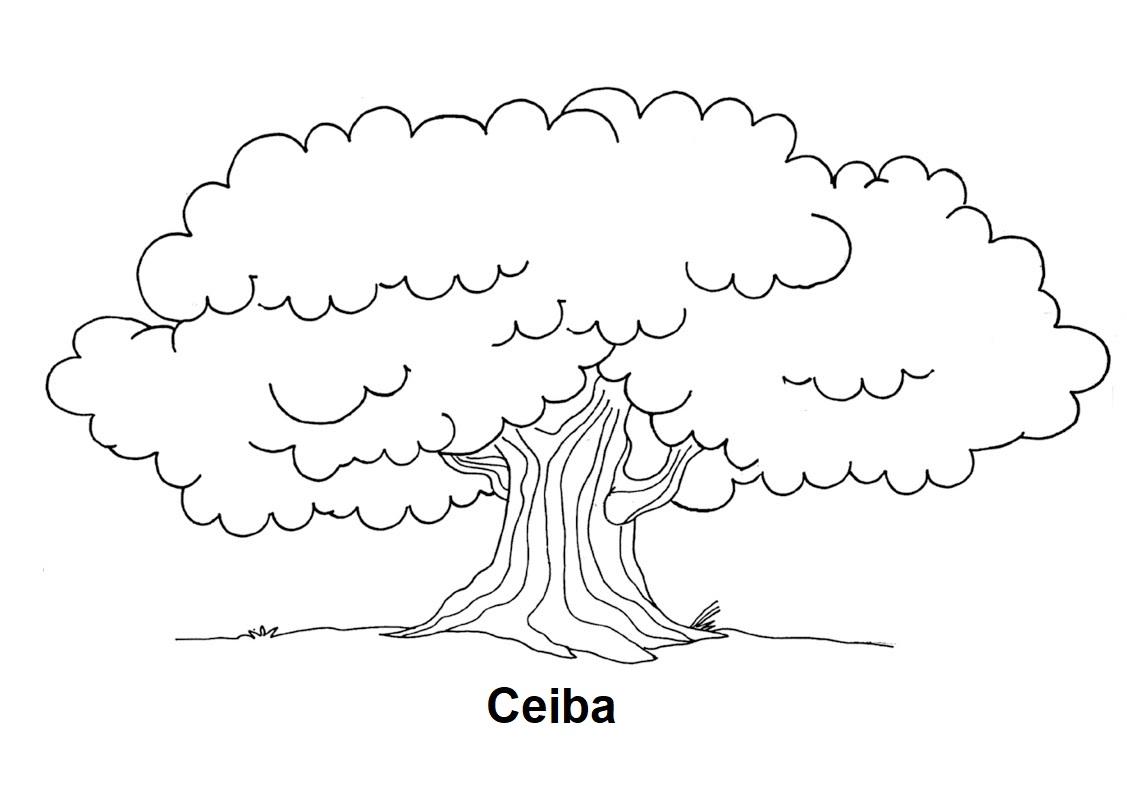Blog De Geografia: Desenho De Ceiba (árvore) Para Colorir