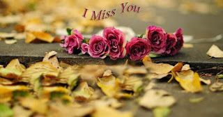 image of i miss you with pink roses