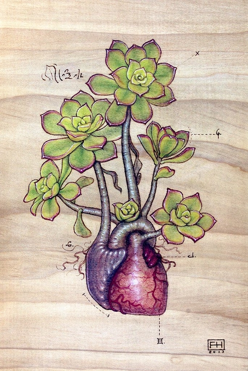 19-Aeonium-Kiwi-Heart-Fay-Helfer-Pyrography-Game-of-Thrones-and-other-Paintings-www-designstack-co