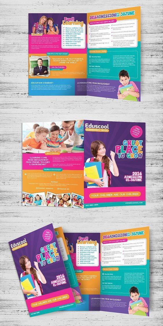 Elementary School Education Bi-Fold – flyer