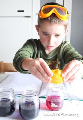 Boy testing pH of lemon using cabbage indicator; STEMmom.org