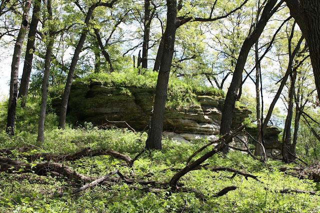 Tabular sandstone formation at Nachusa Grasslands in Illinois