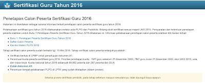 INFORMASI PESERTA DAN POLA PLPG 2016