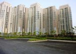 Apartments for rent in DLF Park Place Gurgaon