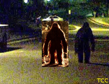 Bigfoot compare