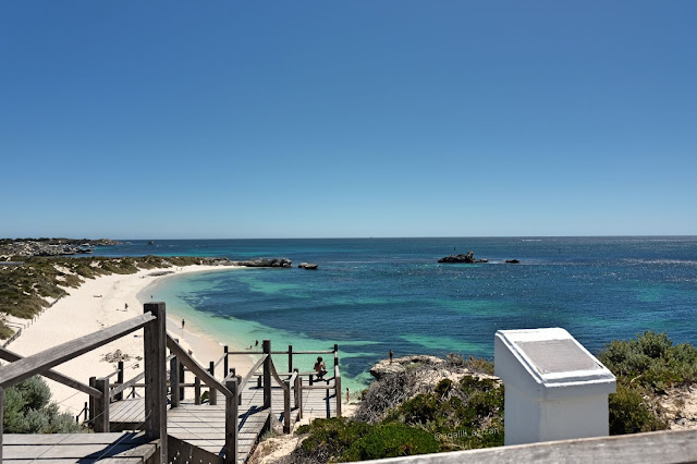 bathurst lighthouse rottnest island perth curitan aqalili