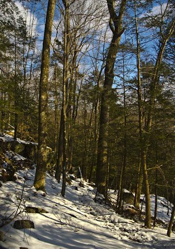 The Saugatuck Trail, Redding CT