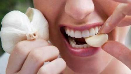 ternyata bawang putih juga dapat dijadikan obat untuk mengatasi rasa sakit gigi cara pemakaiannya