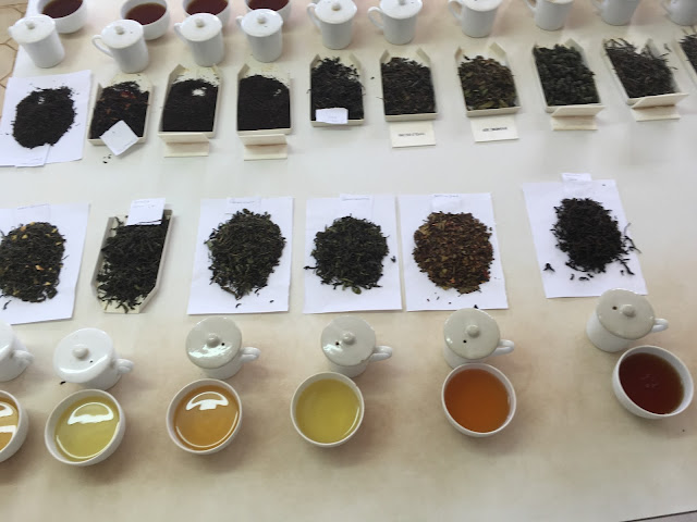 The selection of teas we tasted at the Satemwa tea factory, Malawi