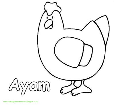 Gambar Mewarnai Ayam - 5