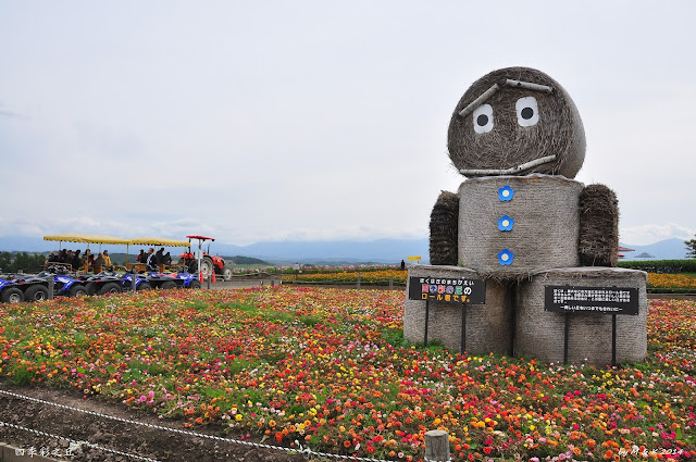 Day 10.3 四季彩の丘