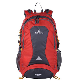Mangrove hiking bag/backpack only $26!
