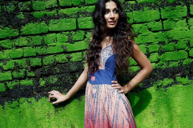 Monica Sharma Dogra Wiki Biography,Age, Wallpaper,Profile,Tv Serial,Indian Hottie