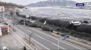 Fukushima operator turned down tsunami simulation plan