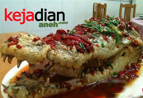 Crocodile Served as Food at a Wedding Banquet