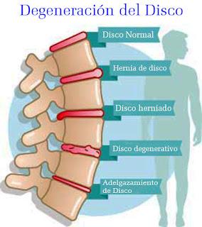 temas de fisioterapia