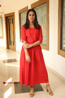 Actress Lavanya Tripathi Latest Pos in Red Dress at Radha Movie Success Meet .COM 0277.JPG