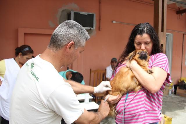 Vacinação Antirrábica de cães de gatos segue até dia 17/09 na zona urbana em Registro-SP