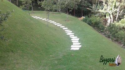 Preparando para fazer o caminho de pedra com cacão de São Tomé com a escada de pedra com junta de grama em casa em condomínio em Mairiporã-SP.