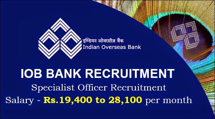 iob bank exam online application 2014
