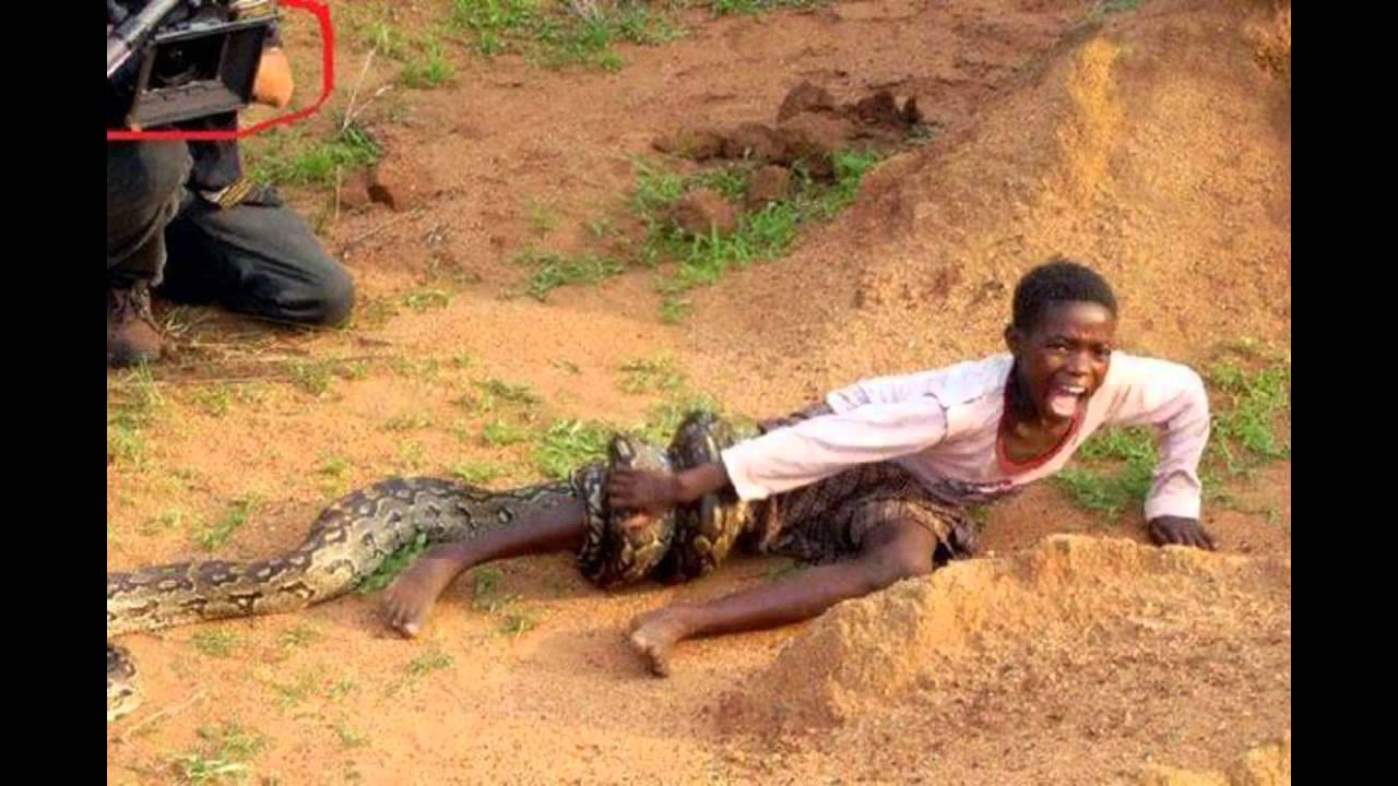 Mzansi Express Boy Attacked By Snake As Photographers