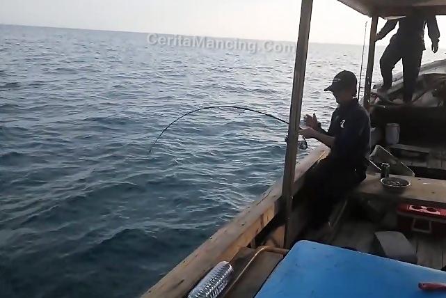 Langsung Tarok Langsung Strike Ikan Jembelang Mantab