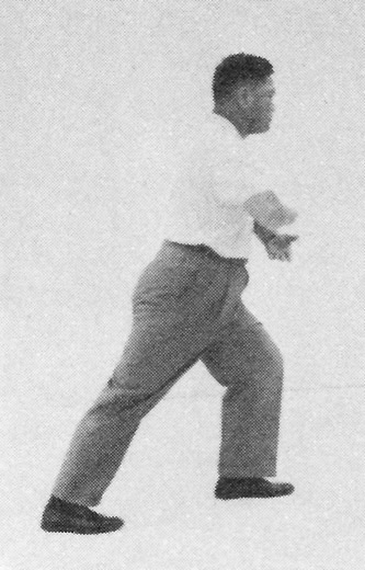Tai Chi Chuan (Square Form) 39. Turn The Body To Face The Left