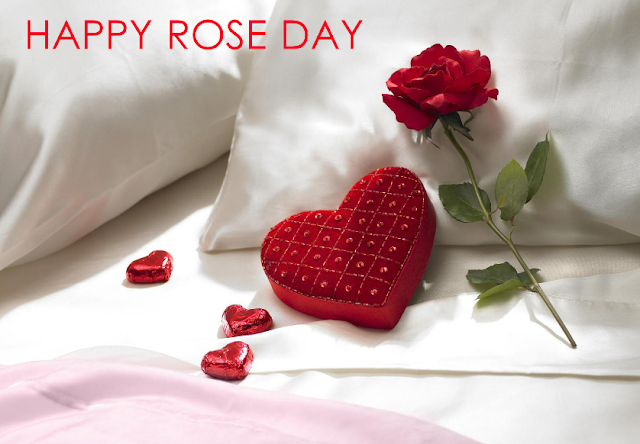 ros%2Bday%2Bimages - #20+ Best Happy Rose Day Images And HD Wallpapers 2018