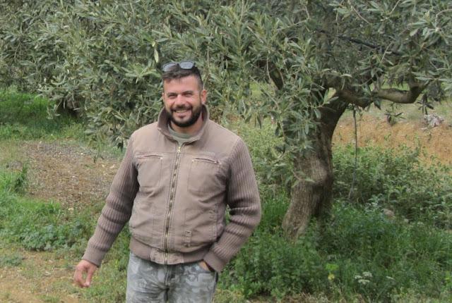 Dimitrios Kyriakoulias produziert Knospe-Oliven und -Olivenöl