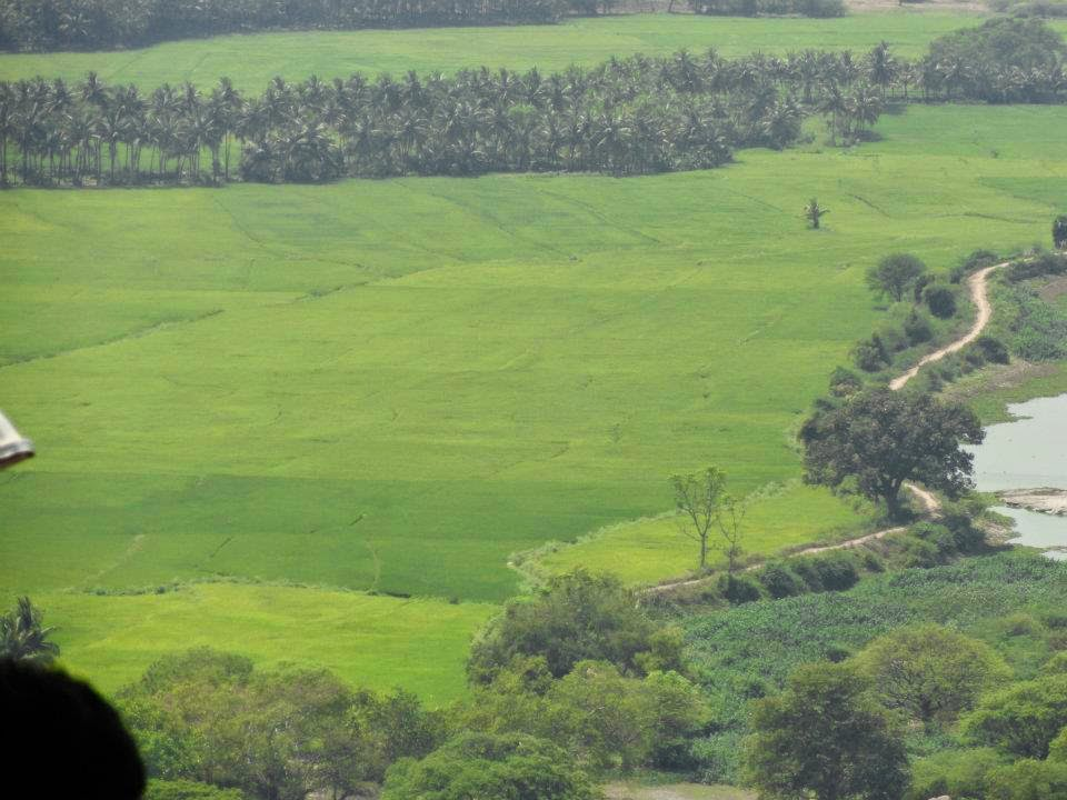 farms from the hills, Ancient Muragan Temple at Hill Station Palani, Tamil Nadu, India