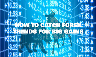 How To Catch Forex Trends For Big Gains, How, To, Catch, Forex, Trends, For, Big, Gains, Trend Catcher, Trading Indicators, Forex Strategy