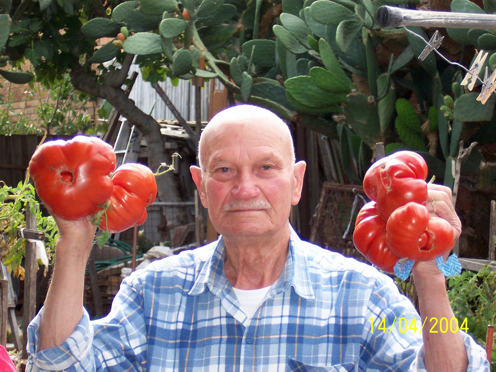 Giuseppe Torcasio : Photo with tomatoes