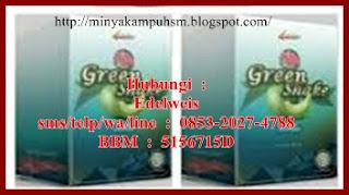 Informasi Terbaru Mengenai Green Shake 4Jovem