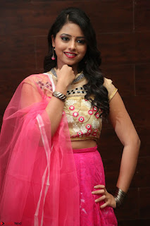 Geethanjali sizzles in Pink at Mixture Potlam Movie Audio Launch 012.JPG