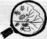 Καταπολέμηση βλαβερών εντόμων