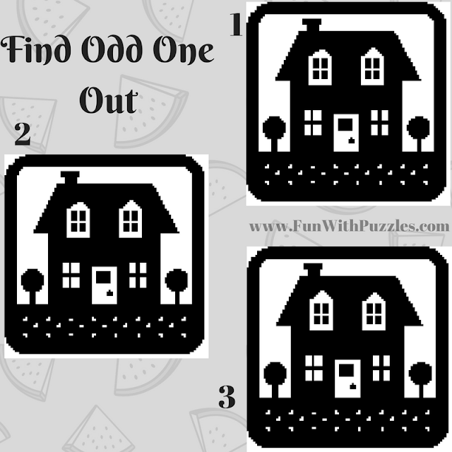 Odd One Out Hut Picture Puzzle-5