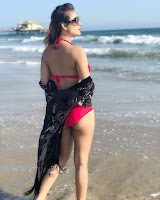 Neha Malik Looks stunning In Red Bikini In Los Angeles (15).jpg