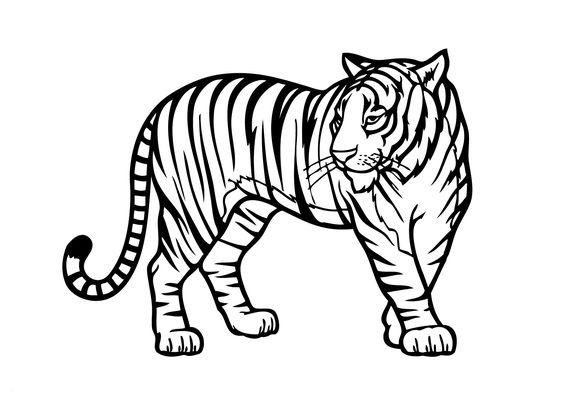 Tranh tô màu con hổ đang di chuyển