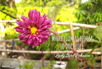 Where flowers bloom so does hope.~Lady Bird Johnson