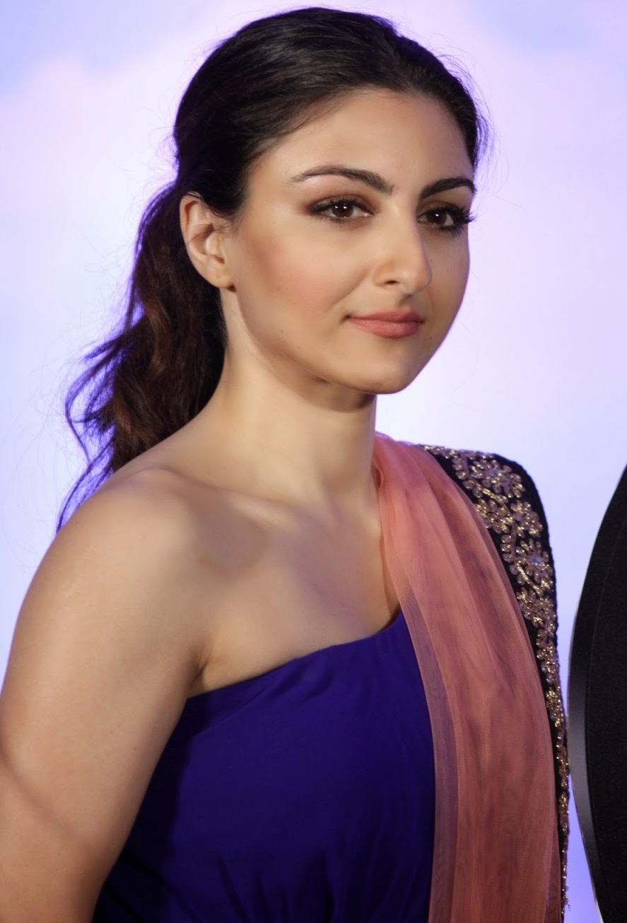 Soha Ali Khan Hot Stills In Blue Dress
