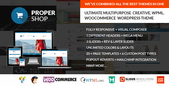 Woocommerce WP Theme