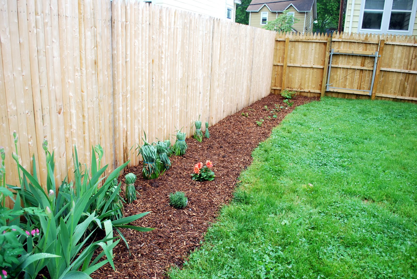 in the little yellow house: perennial garden along the fence