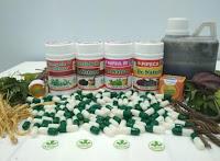 Obat Sipilis Kencing Nanah Gonore Herbal Denature