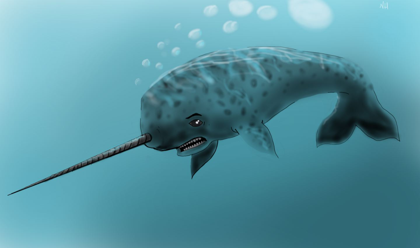 Nate's Right Brain: Challenge Day 2~Favorite Animal–Narwhal