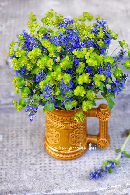 aranajment rustic galben albastru blue yellow flower arrangement summer
